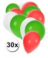 Ballonnen setje van 30 stuks RWG