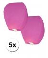 5x Papieren wensballon roze