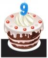 Cijfer kaarsen 9 jaar
