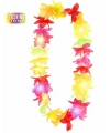 Lichtjes Hawaii krans