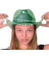 Carnavals glitter hoed groen deluxe