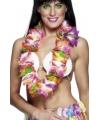 Tropische hawaii kransen colors
