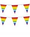 Punt vlaggenlijnen regenboog 10 meter