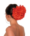 Rode Spaanse haar klem