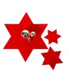 Kerst onderzetter rode ster