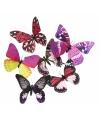 Dieren magneet vlinder roze/paars  13.5 cm