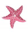 Dieren magneet zeester roze 7.5 cm